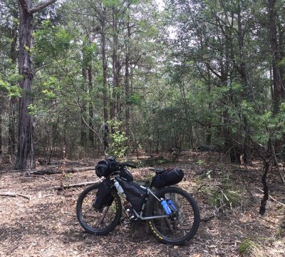 Nice place to stop for a break. Somwehere between Yalwal and Braidwood Rd on Yarramunmun Firetrail.