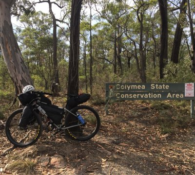 Entering Colymea State Conversation Area. Another sign of the deadly approach to conservation species 'management'